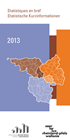 Couverture de la publication - Date de publication - 2013-01-22 - Nombre de pages - 52